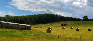 Rolling hillside with hay bales and tractor baling hay
