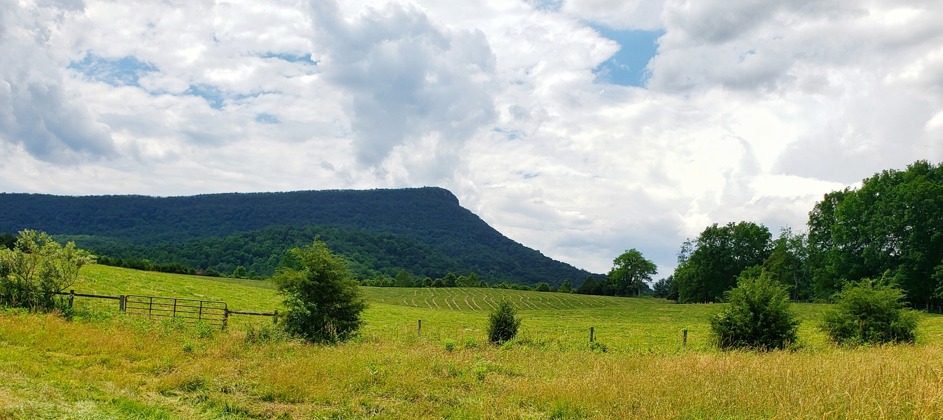 View of Jump Mountain from Jump Mountain Vineyard in Rockbridge Baths, Virginia