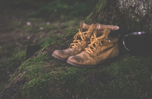 A pair of light brown hiking boots sitting atop of patch of moss by a tree, next to a black coffee mug.
