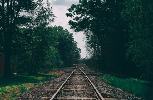 A long empty train track surrounded by tall green trees and grass against a grey sky.