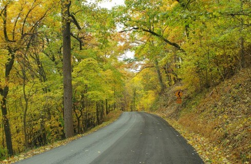 Empty paved road surrounded by beautiful green and yellow trees.