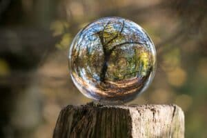 glass ball on a fence post with a tree and nature scene inside ball
