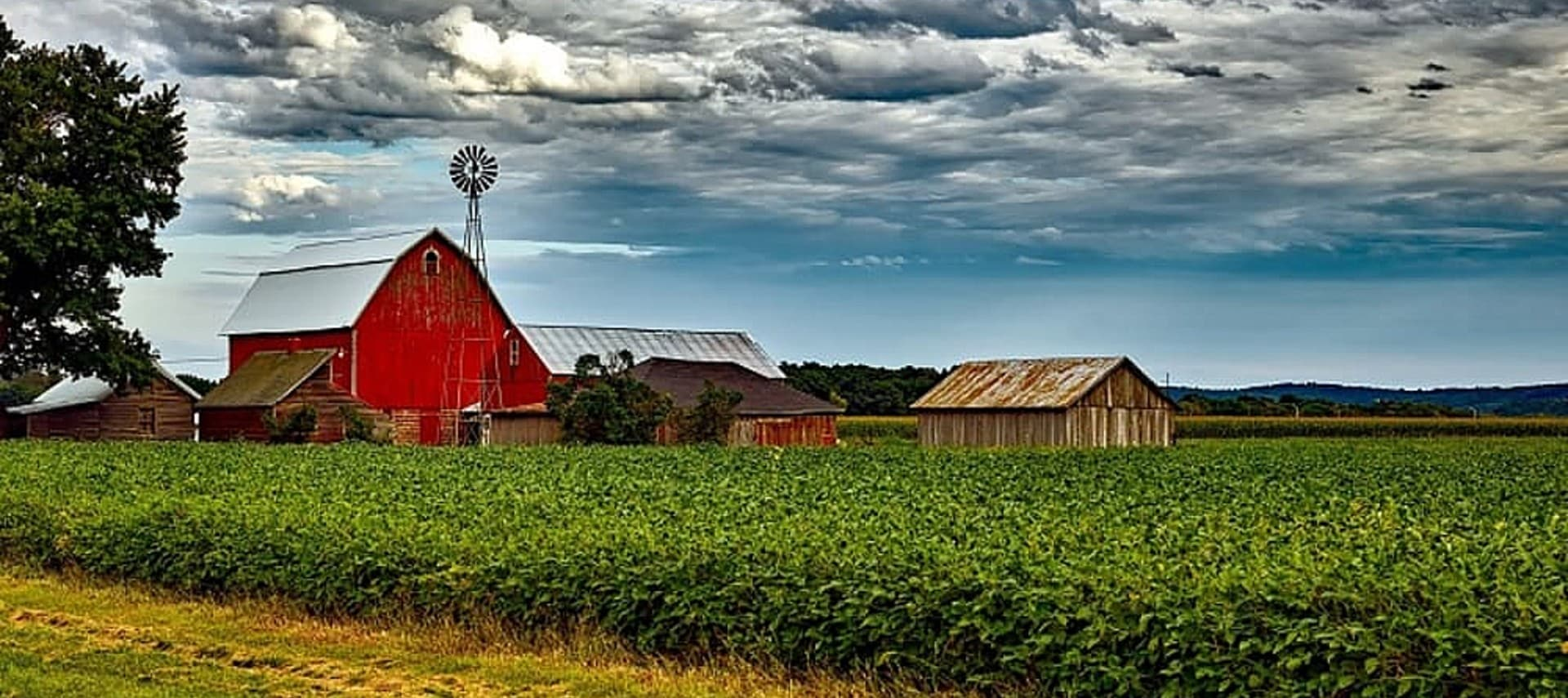 Serene farm setting showing a large red barn next to several smaller brown buildings in a green crop.