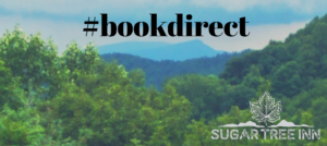 Blue Ridge Mountain view of Jump Mountain with book direct text across top