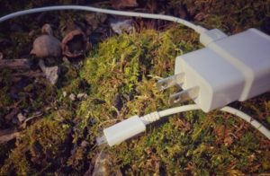 White square charger and cord for iphone on bed of green moss nextto some cracked acorns.