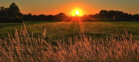 blazing orange and gold sunset reflecting over a field of wheat